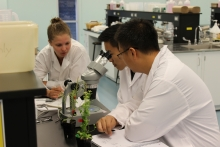 iBASE students studying plants in a science lab