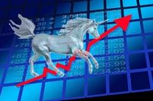 stockmarket unicorns