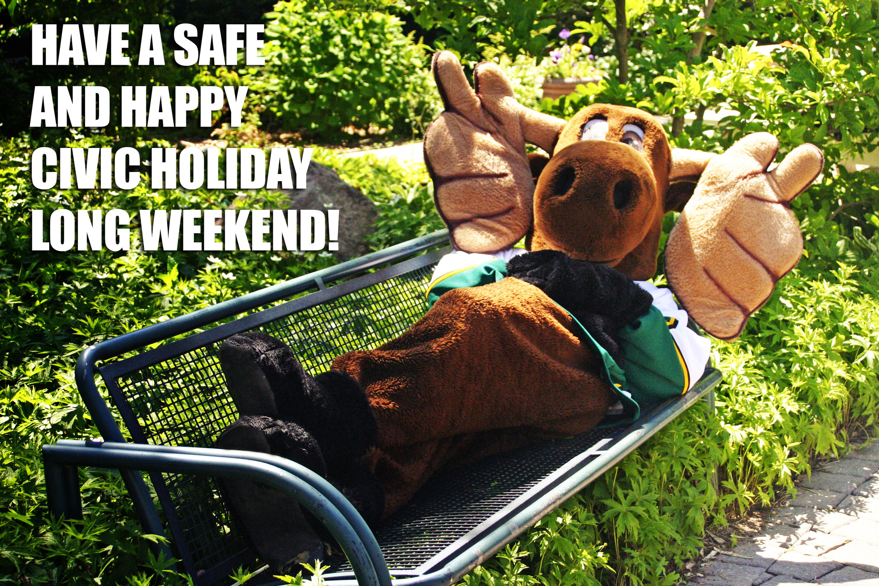 Reni moose lying on a bench in the garden. Image reads: have a safe and happy civic holiday long weekend.