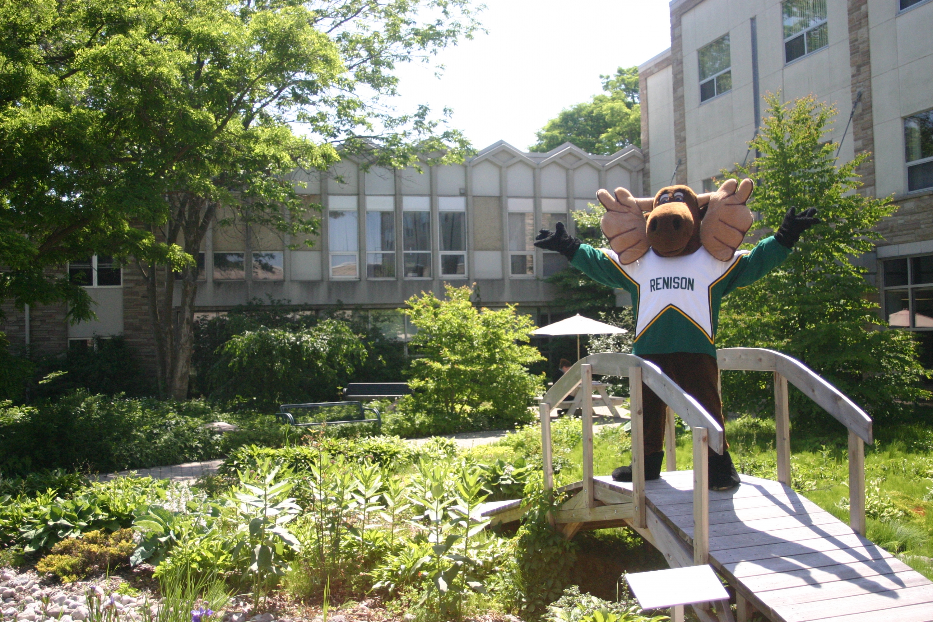 Reni moose welcoming you to Renison!