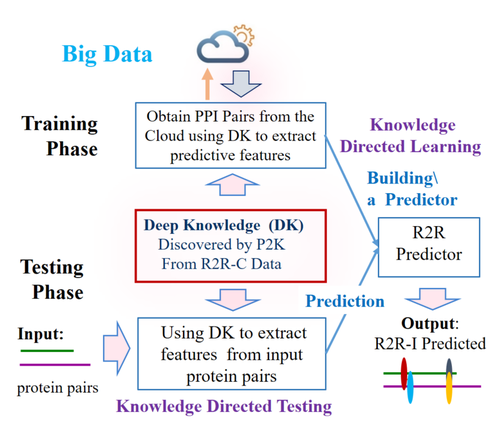 Chart demonstrating flow between testing and training phases for knowledge directed learning