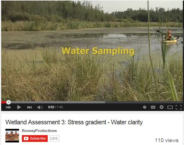 Screen capture of video on wetland assessment