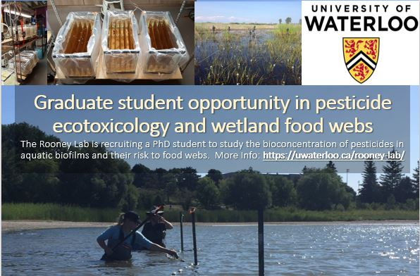 Image of students collecting biofilm samples in the field