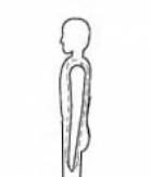 Shoulder roll stretch