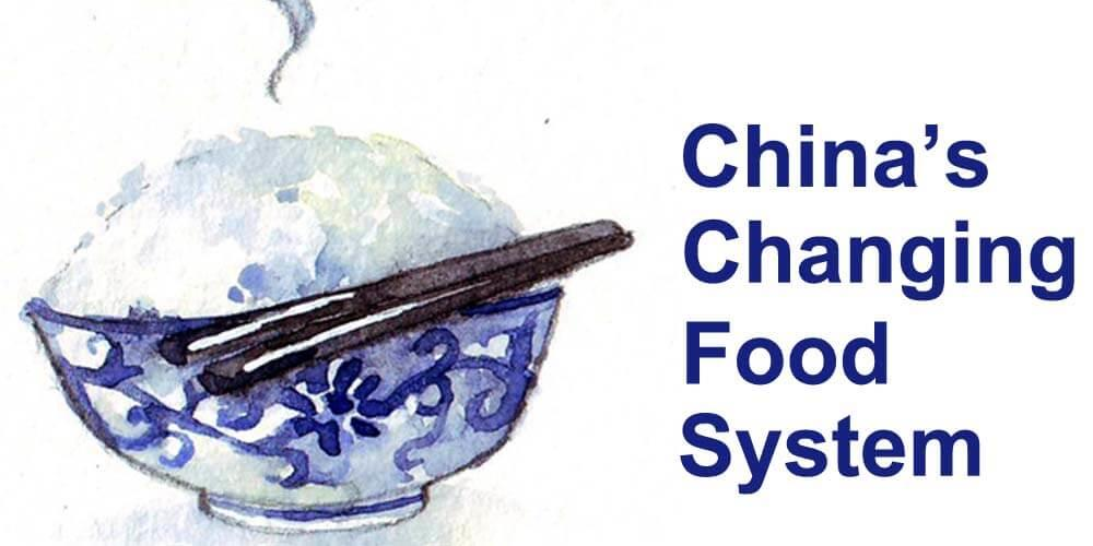 China's Changing Food System logo.