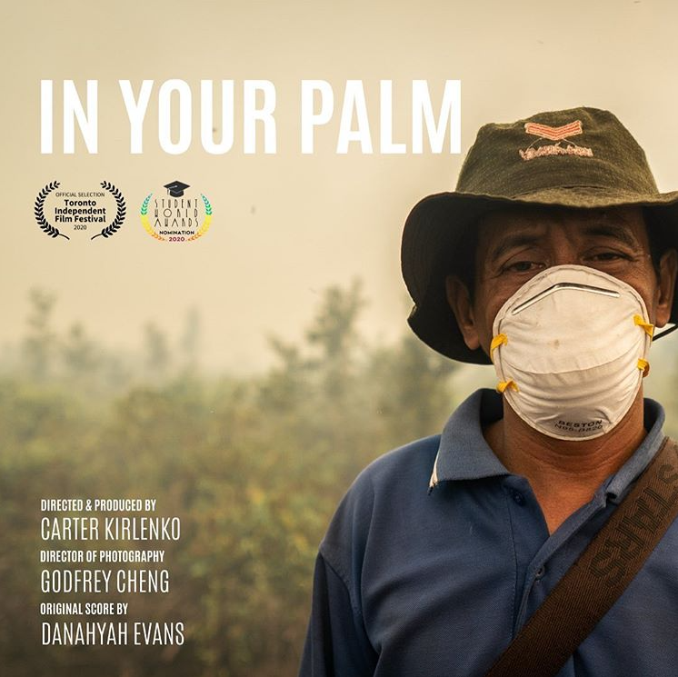 Cover of In Your Palm Documentary