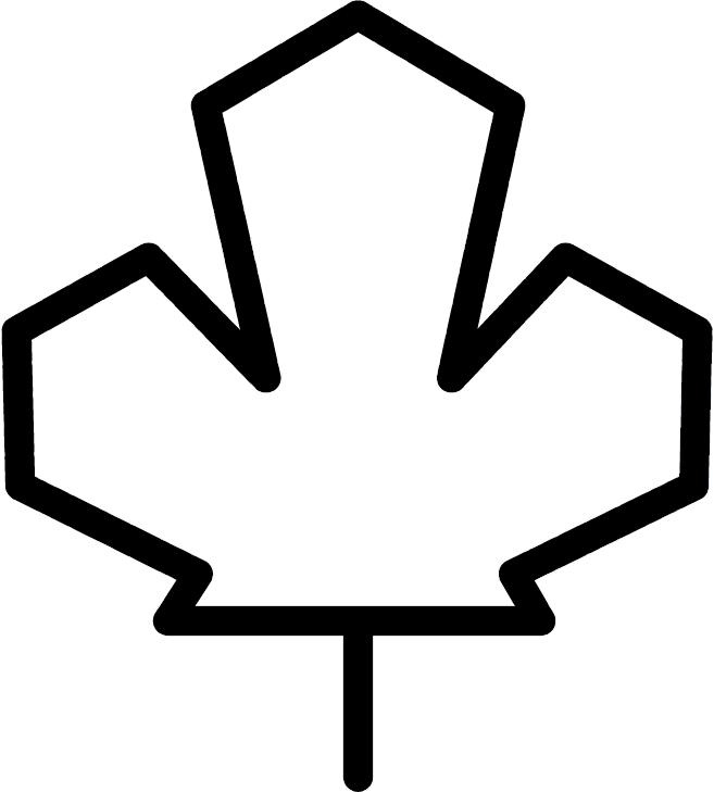 Maple leaf graphic
