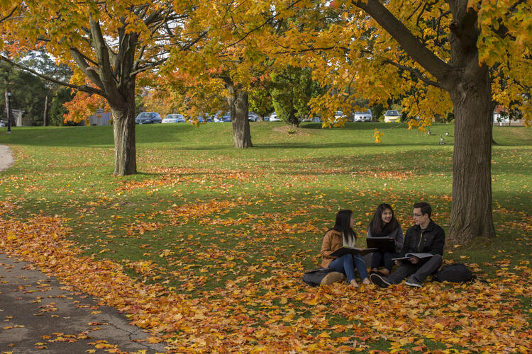 an image of three students sitting under a tree