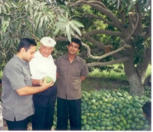 Examining varieties of mangoes in the rural supply chain in Asia