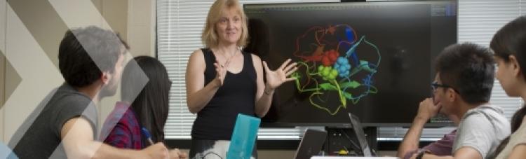 Prof. Elizabeth Meiering teaching a class.