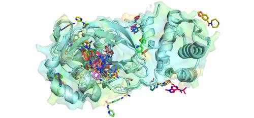 SARS-CoV-2 Mpro complexe structure.