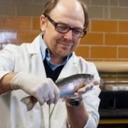 Prof. Brian Dixon