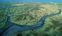 Wetland in Netherlands.