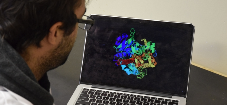Eric Le Dreff-Kerwin looks at a protein structure on a laptop.