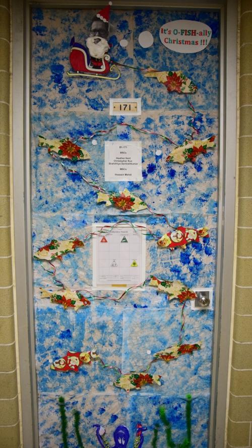 Paul Craig's fish holiday door