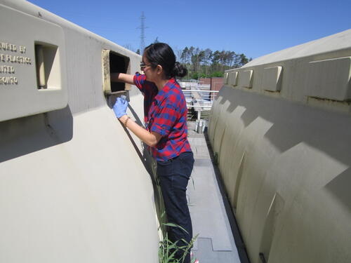 student sampling waste water at sewage treatment plant