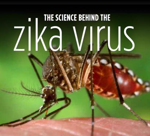 Zika virus public lecture poster