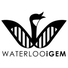 Waterloo iGEM logo