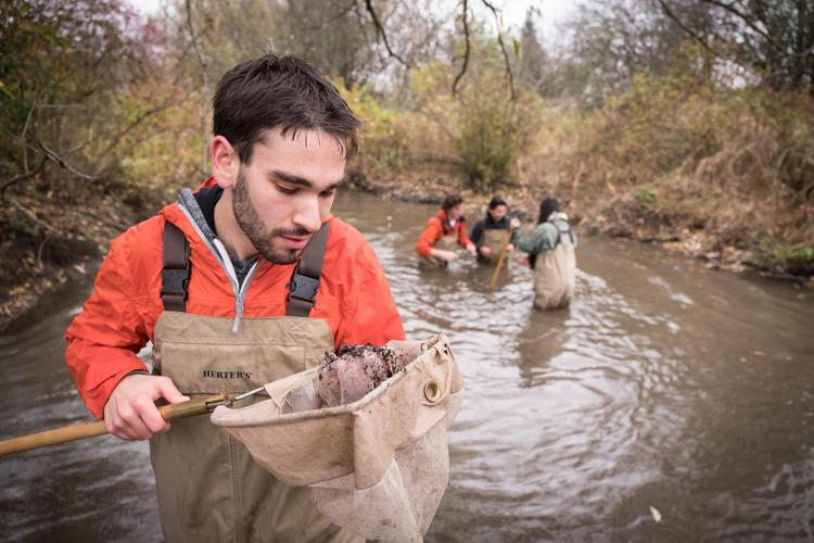 Student in stream examining sample
