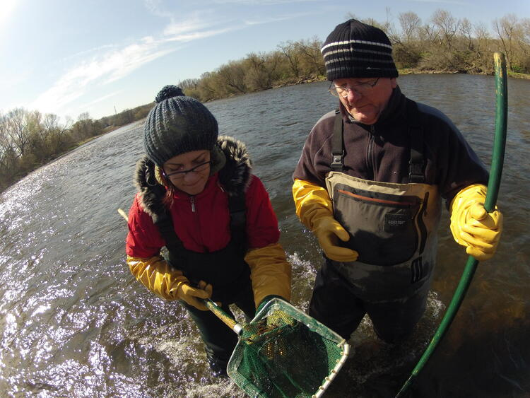 Professor Servos and a student wearing hip waders, and fishing in the Grand River with nets