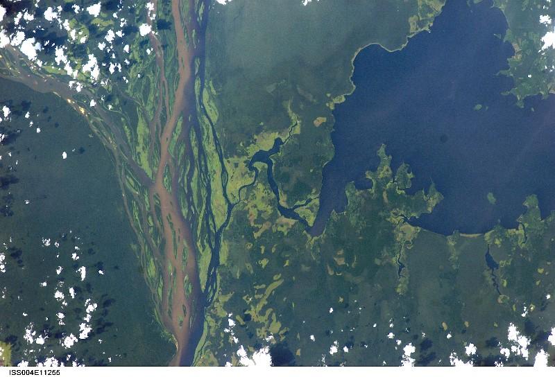 Aerial cuvette centrale from space, NASA, Roberta Bondar