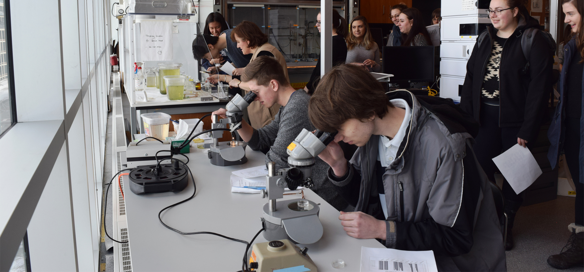 Anthropology students touring pharmacy labs and using microscopes
