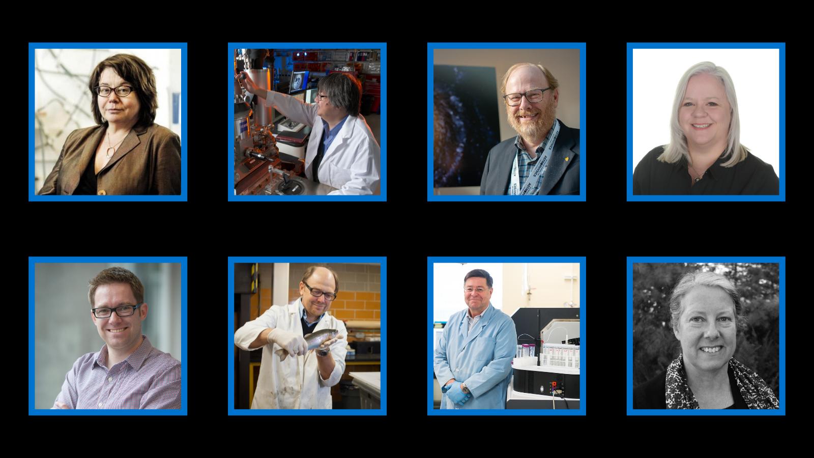 Professors Linda Nazar, Tong Leung, Michel Fich, Kirsten Muller, Paul Craig, Brian Dixon, David Blowes, and Carol Ptacek