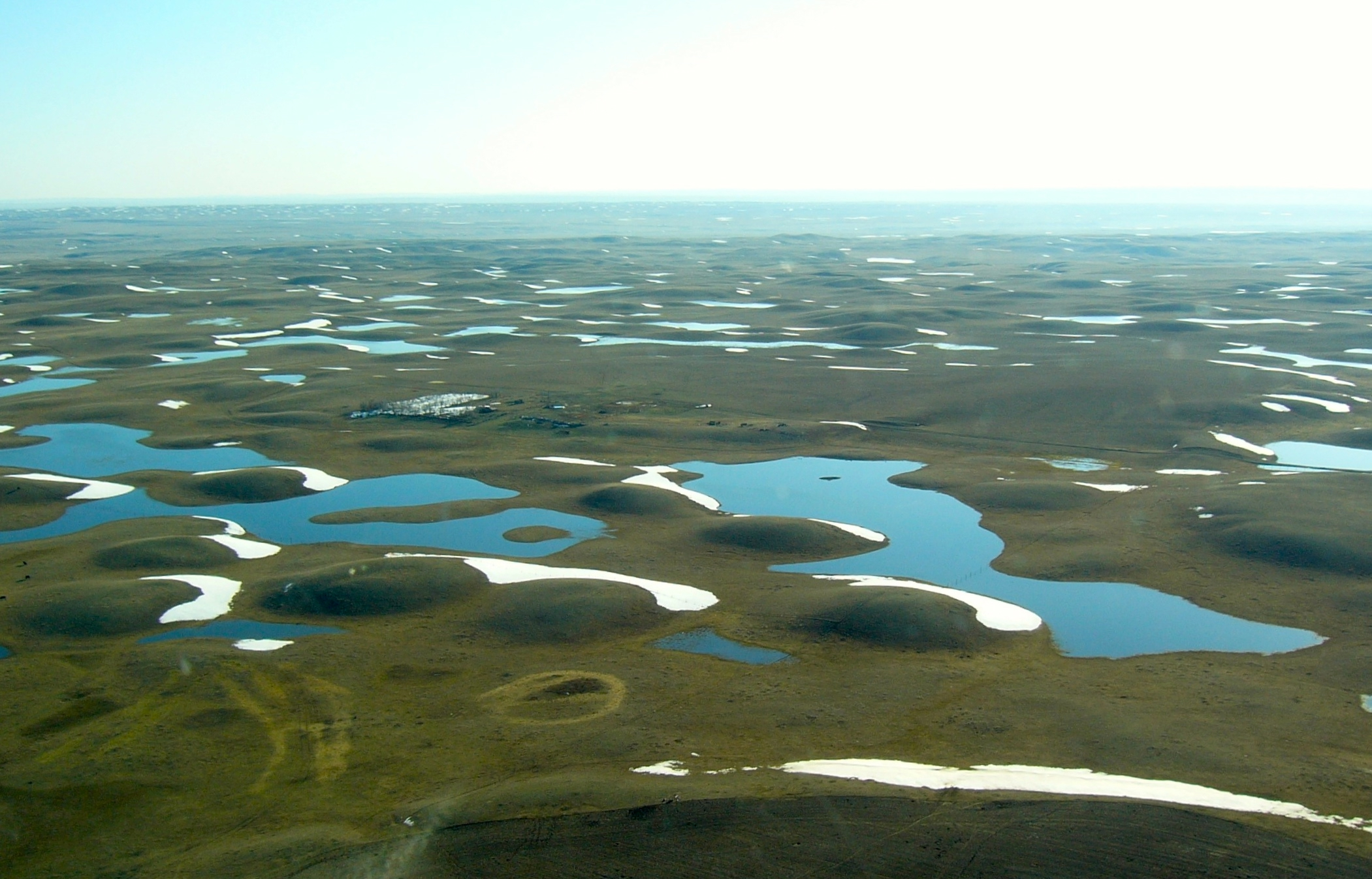 The Prarie Pothole Region wetlands. Photo credit: Ducks Unlimited, Inc.