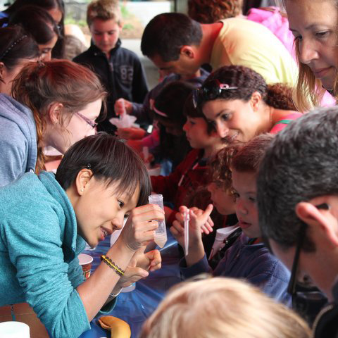 Science outreach volunteers extract DNA from bananas with local kids.