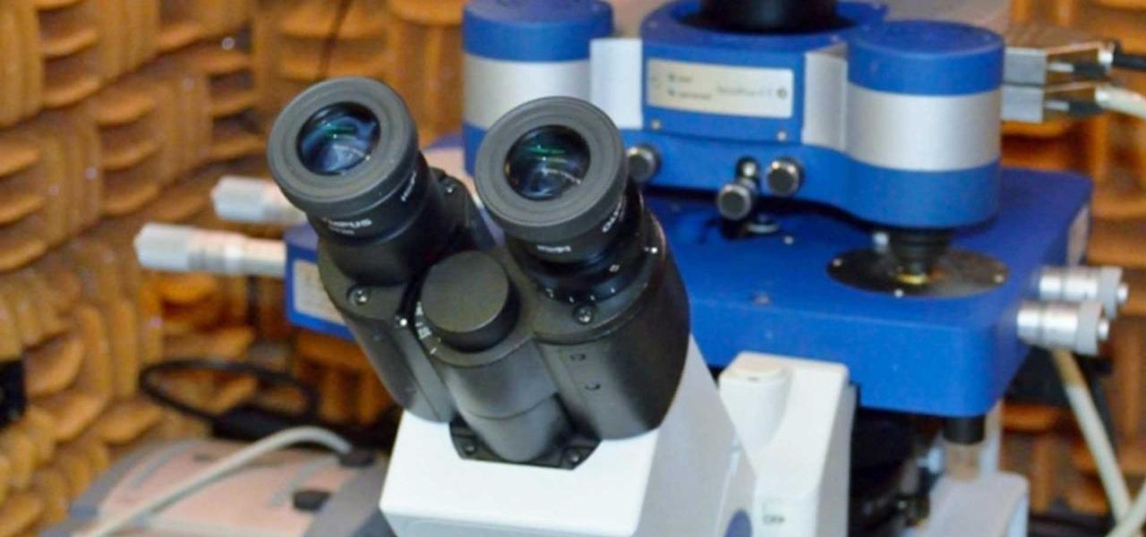 eye lens of a microscope