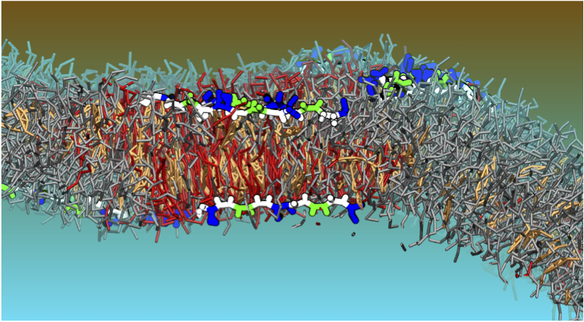 Computer generated graphic of molecule interactions on a cell surface created by Drew Bennett, winner of the Polanyi Prize
