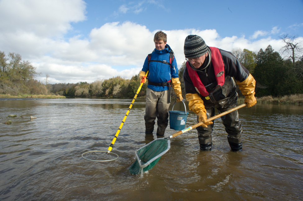 Professor Servos and a student electrofishing in the Grand River