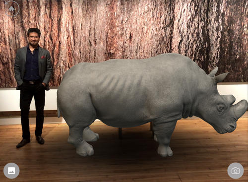 Vikas Gupta next to Sudan, the last male Northern White Rhino, in augmented reality.