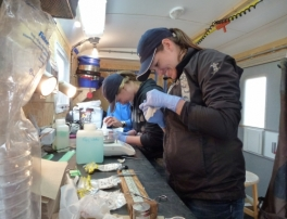 Graduate students sampling fish in our mobile trailer