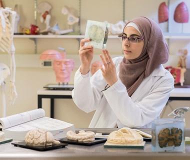 Nooran AbuMazen studying samples of a brain