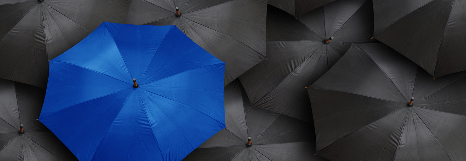 Blue umbrella, in the middle of many black umbrellas