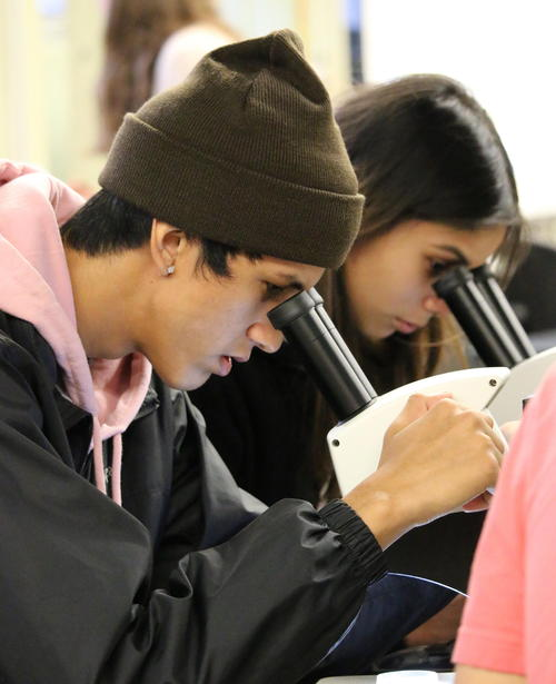 Indigenous students looking in microscope