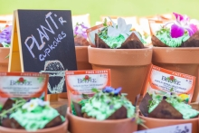 cupcakes and seedling displays