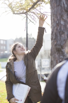 Directions student reaching for a tree branch