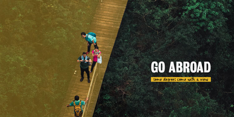 Four people pose to take a photo on a suspension bridge over a forest