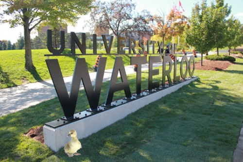 University of Waterloo sign during spring time with a baby gosling photoshopped in the corner