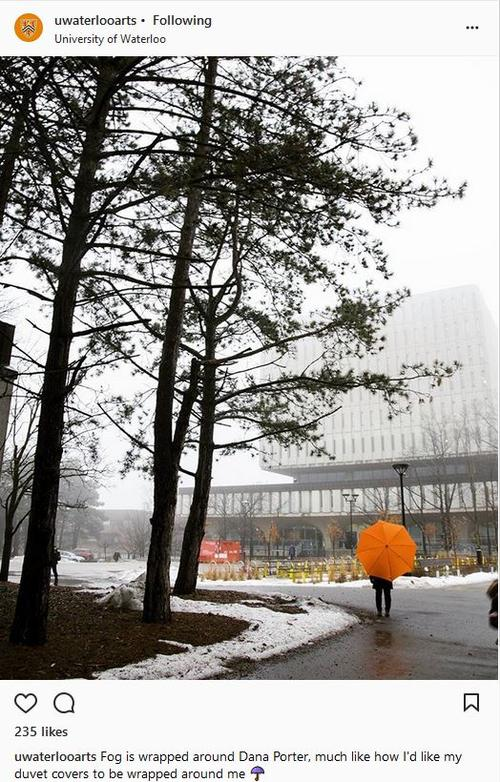 A single orange umbrella in the fog and trees with Dana Porter Library towering, half-shrouded before her