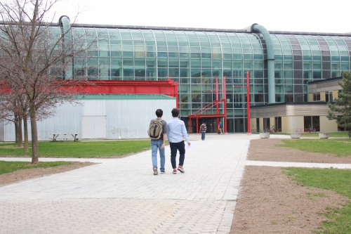 Students walk towards the Davis Centre on the newly paved pathway.