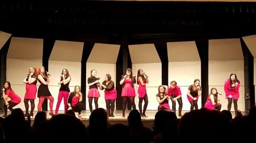 A large acapella team performs on stage