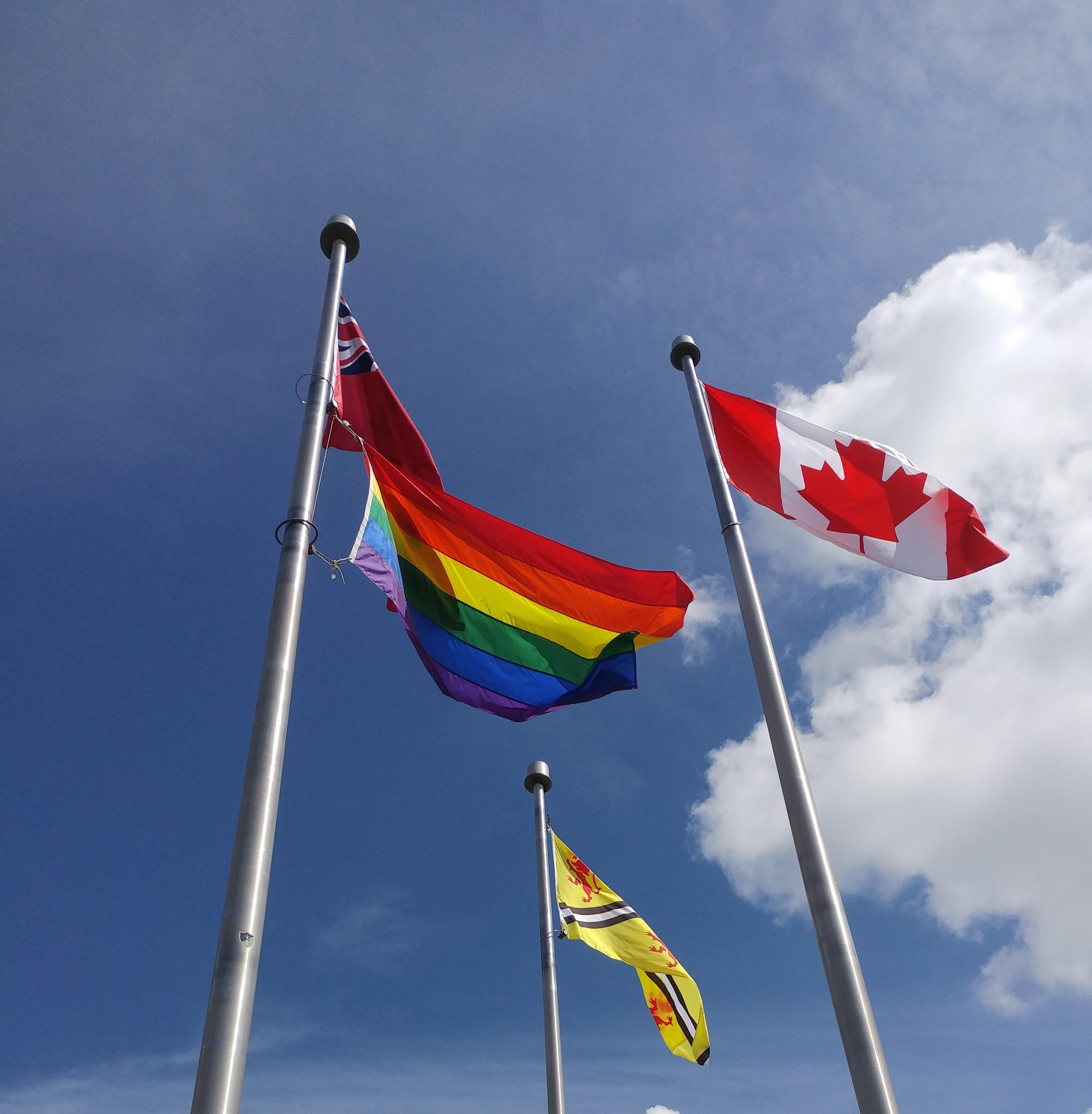 Raised Pride flag at UWaterloo.
