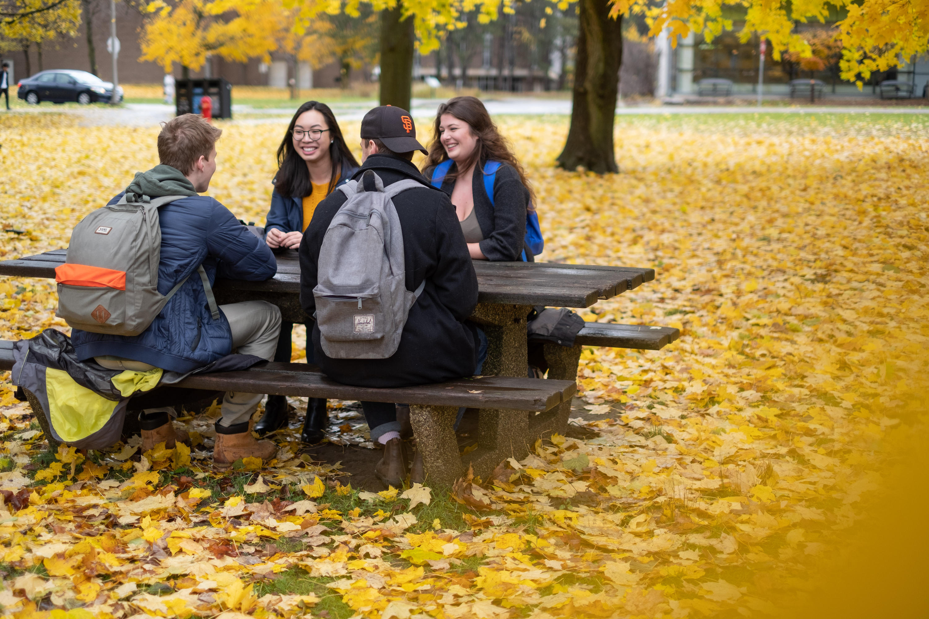 Students outside during fall term.