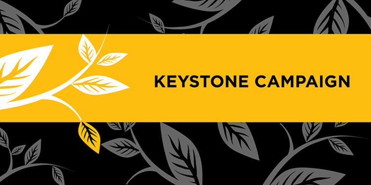 Keystone Campaign