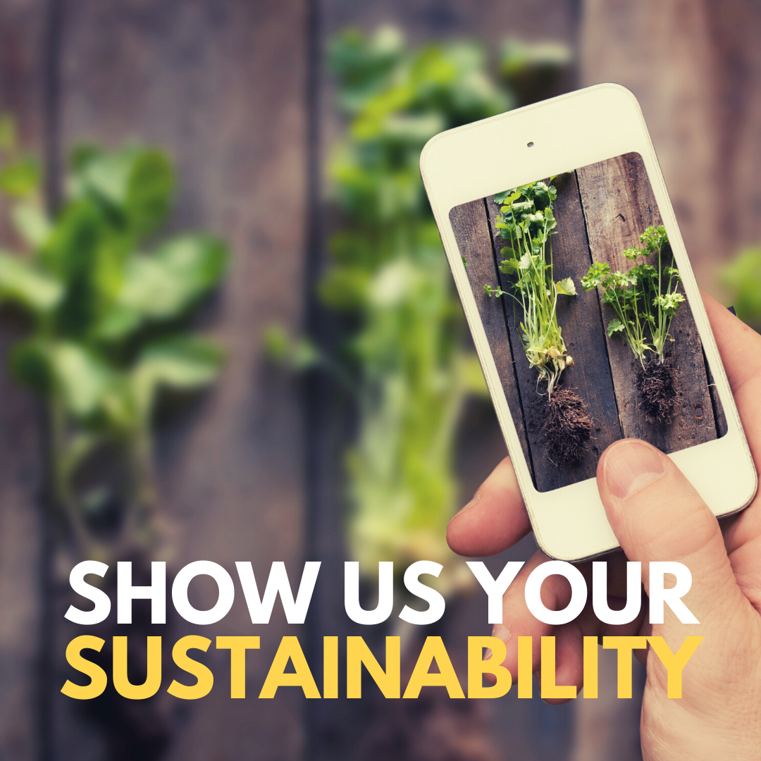 """Person taking photo of leaves on their smart phone with text reading """"Show Us Your Sustainability"""""""