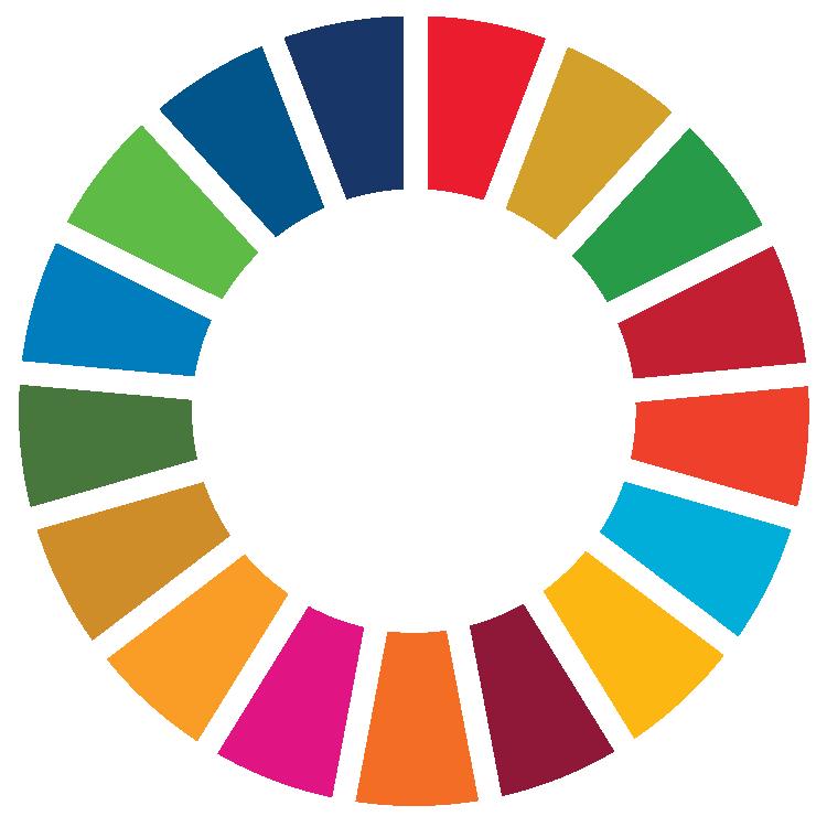 UN Sustainable Development Goal Wheel
