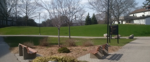 Benches overlooking trees and green space on South Campus